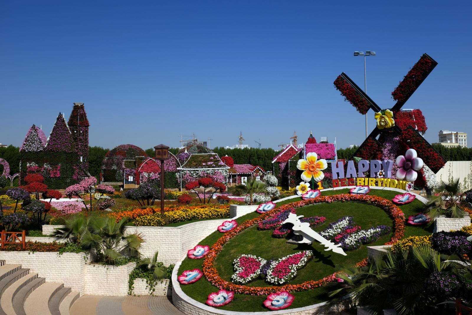 Dubai Miracle Garden - Happy Birthday