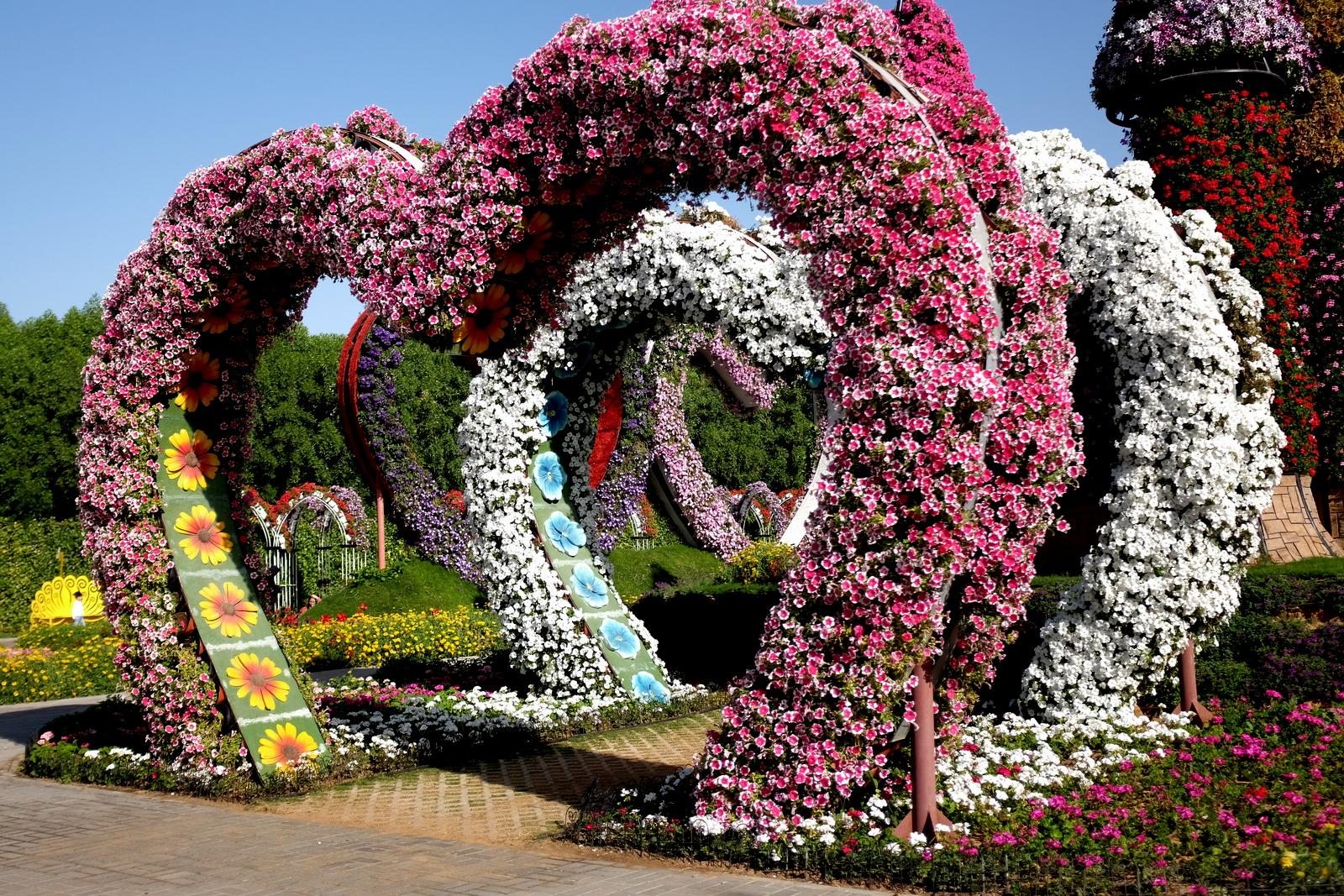 Dubai Miracle Garden - Hearts