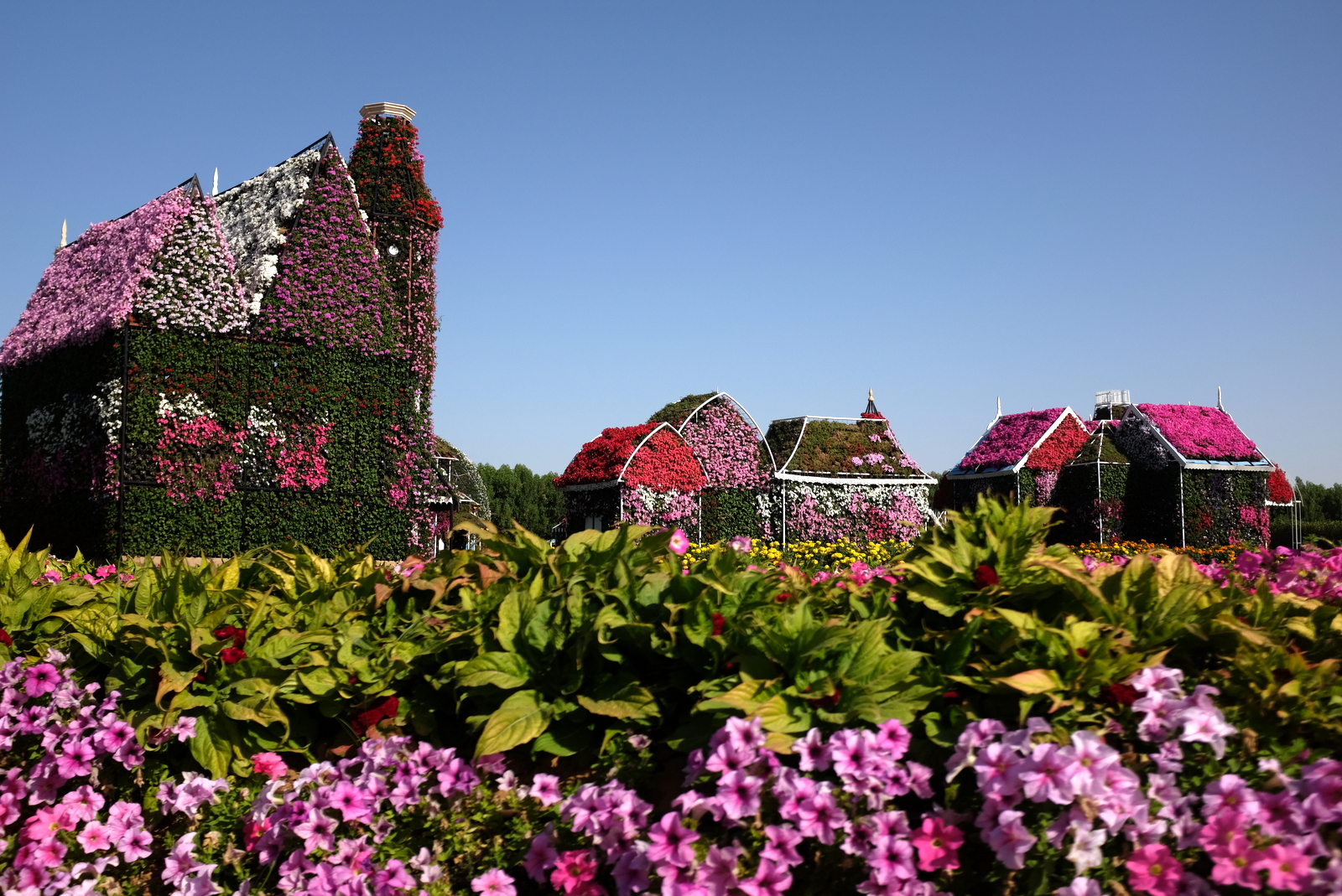 Dubai Miracle Garden - Flowers and houses
