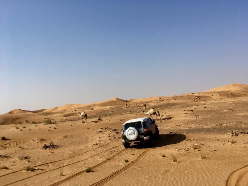 Dubaj - jeep v poušti