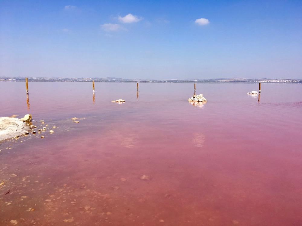 Torravieja - růžové jezero